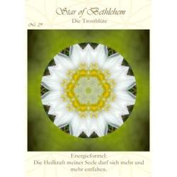 Bachblüten Energie Mandala...